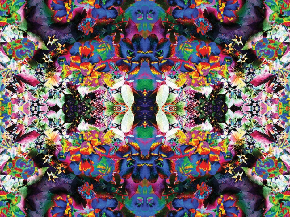 """""""Village Flowers 1 C"""" is a psychedelic flower and plant art work and image from Sacred Square Art and Design. ©2013"""